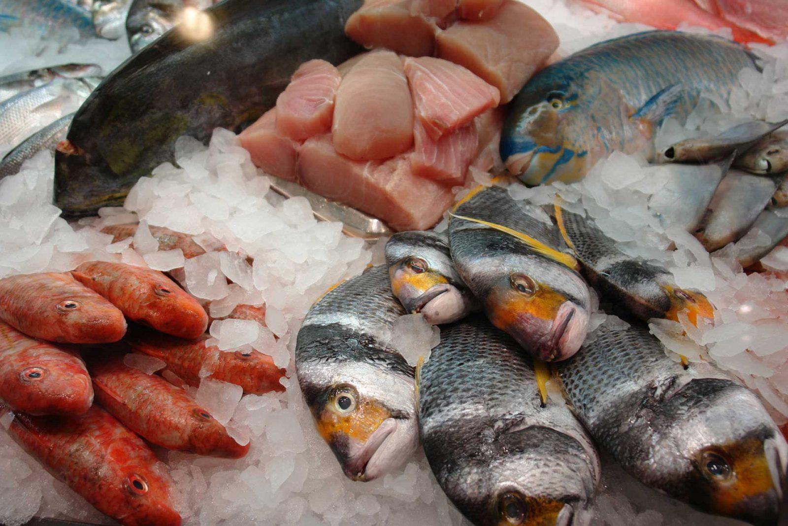 pesce-congelato-conservazione